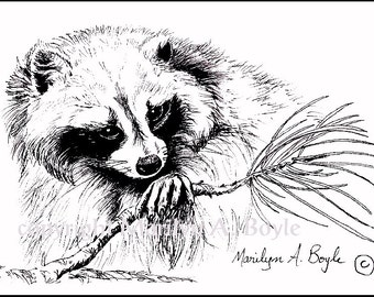 PRINT - INK DRAWING - Racoon, wildlife, black and white, ink,  Canadian art, 5 x 7 inches, wilderness,