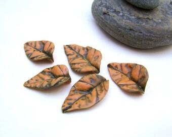 5 orange leaves (No. 1 set)