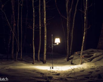 Instant Download | Forest Lamplight | Photography