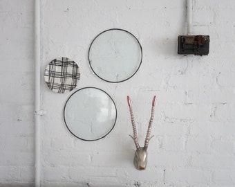 Vintage Glass Wall Art, Set of (2) Glass Plant Trays