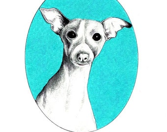 """Dog Portrait art print of an original drawing available 5x7"""" or 8x10"""""""