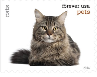 5 Unused Cat Postage Stamps // Pet Cats // Forever Postage Stamps for Mailing