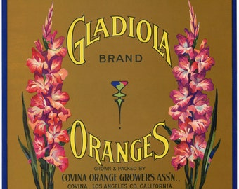 Gladiola Brand Orange Crate Label