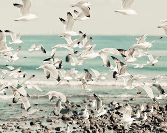 Ocean Photography, White Blue Beach Print Birds in Flight at Malibu California Print 11x14 8x10