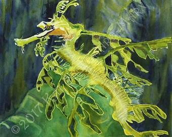 Limited Edition of Original Watercolor Archival  Giclee Leafy Sea Dragon Ocean Marine Art Seahorse