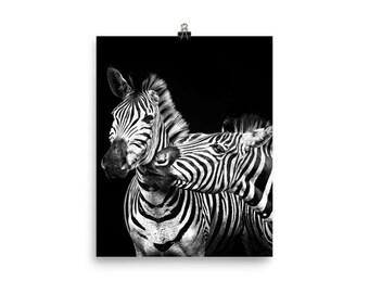 Zebra friends print