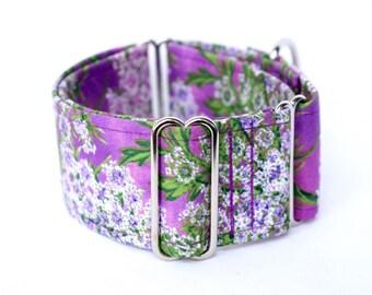 Martingale collar, Greyhound Collar, Galgo Collar, Saluki Collar, Sighthound Collar, Floral Collar, Purple Martingale, Cotton Dog Collar