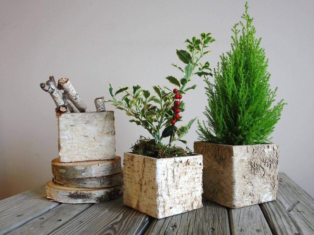 Birch bark vases wood boxes christmas tree arrangement square zoom reviewsmspy
