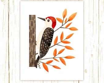 Red-Bellied Woodpecker Print -- bird art -- bird art 52 birds stephanie fizer coleman illustration