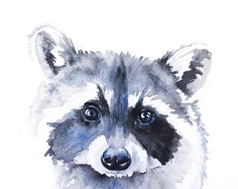 Raccoon - Art Print