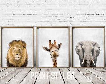 African Animals - Safari Print Set - Wall Art Prints - Safari Wall Art - Safari Animals