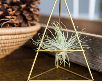 Geometric Modern Industrial Himmeli Table Air Plant Holder