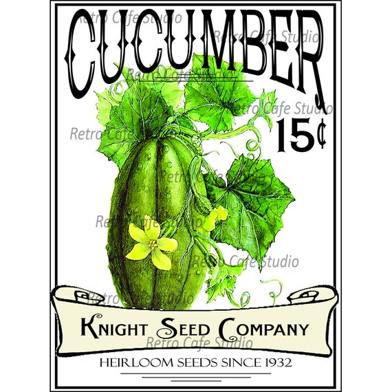 digital download vintage vegetable cucumber seed packet illustration rh etsystudio com seed packet clipart seed packets clipart