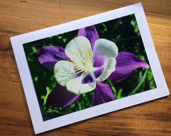 Columbine Photo Card
