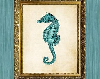 Teal Seahorse  8 x 10  Print Sea Life Art Print Seaside Art Print Sealife Art Print Natural History Print