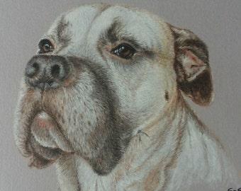 Custom Pet Portrait Commission painting acrylics Dog art artwork original artwork wall Art gift idea