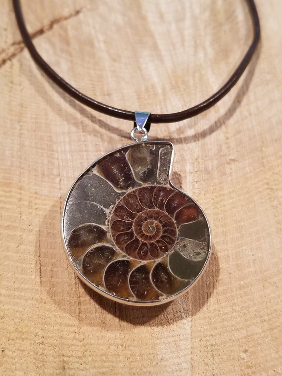 Fossil Ammonite Gem Stone Pendant Necklace Adjustable Length Rustic Outdoor Earth Jewelry Natural Nature (N548)