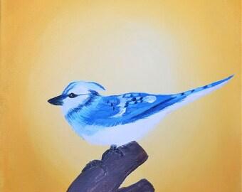 6x6 Bluejay - Acrylic Original Painting