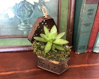 Brass Cricket Box || Vintage Cricket Box || Brass Planter || Succulent Planter