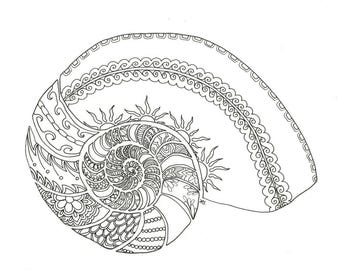 Nautilus Shell Adult Coloring Page