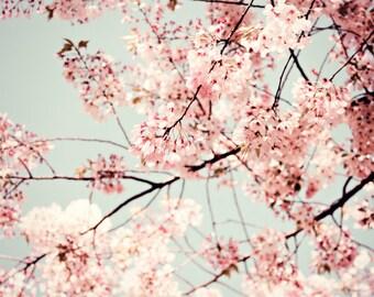 "Cherry Blossoms Art - Botanical Print - Gift For Her - Cherry Tree Print - Pale Pink Wall Art - Sakura - Nursery Decor ""Promise"""