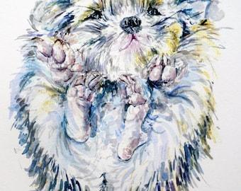 Hedgehog print, hedgehog nursery art, giclee print, hedgehog drawing, hedgie, watercolor illustration, cute hedgehog, hedgehog gifts