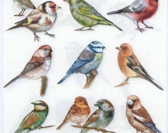 4 Decoupage Napkins | Collection of Birds | Bird Napkins | Wildlife Napkins | Spring Napkins | Party Napkins | Paper Napkins for Decoupage