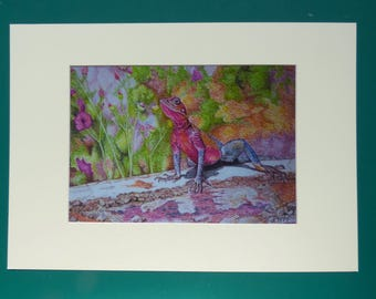 Lizard Prints, Lizard Art Prints, Rainbow Lizard, Lizard Paintings, Rainbow colours, Wildlife Art Prints, Colourful animals, Reptile Prints
