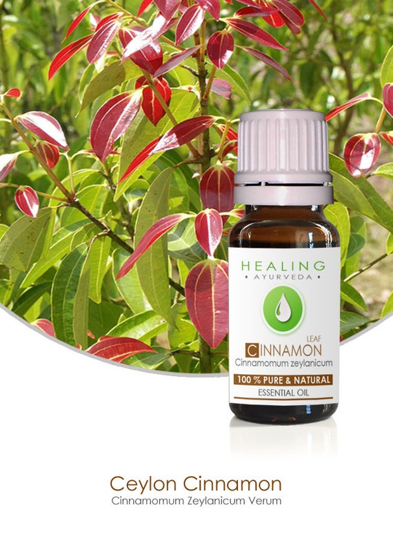 Cinnamon Leaf Oil,Cinnamon essential oil, 100% Pure Essential oils, Aromatherapy oils, Ceylon Cinnamon oil, Chakra healing.huile essentielle