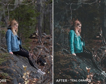 5 professional Lightroom presets