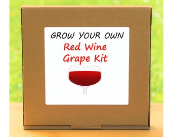 Unusual Windowsill Gardening Gift - Grow Your Own Red Grapevine Plant Kit