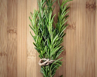 Kitchen wall décor, Food photography, Cooking art // Culinary Herbs No. 2 – Rosemary