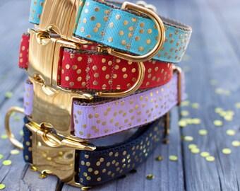 Gold Dog Collar - Turquoise Dog Collar, Gold Dots, Confetti, Turquoise, Metallic Gold, Adjustable Dog Collar, Real Gold, Metal Hardware