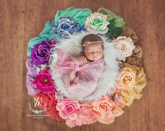 Digital Newborn Backdrop/ prop, Rainbow - (Natalie)