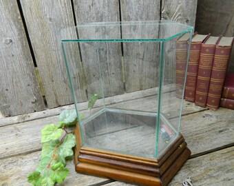 Vintage Wood and Glass Musical Terrarium