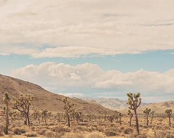desert landscape photo, Joshua Tree photography, boho decor, desert print, California wall art, dorm decor, boys room, living room art
