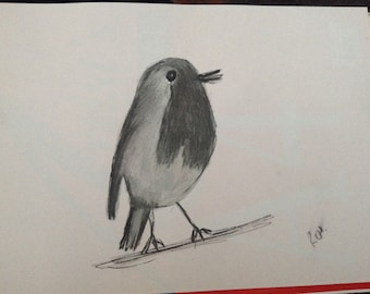Charcoal SoftPastel Graphite Robin Bird Sketch Drawing A4
