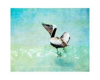 Pelican art print, Florida photography, Siesta Key art, Florida art, beach photography, beach art, 16x20 art print, Florida bird art