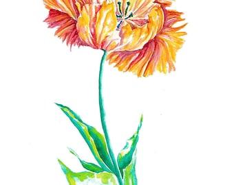 Tulip painting / Parrot tulip fine art print / Minimalist tulip print / Watercolor floral painting / Botanical art / Floral wall art / Tulip