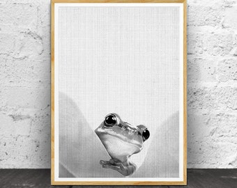 Frog Print, Nursery Art Print, Nursery Decor, Nursery Print, Nursery Animal Art,  Animal Print,  Animal Wall Art, Nursery Wall Art, Animal