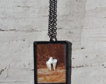 fox molar vintage instant film resin pendant necklace gray fox real animal teeth old photo trees nature witchy jewelry vulture culture