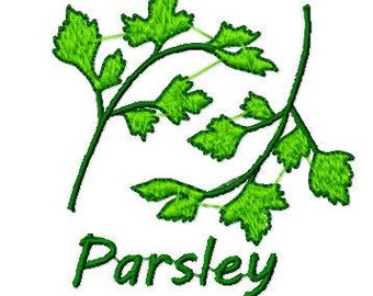 Parsley Herb Plant Leaf Embroidery Design, Instant Download, Fits 4x4 Hoop, PES format and more