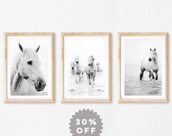 Horse Prints, Set Of 3 Prints, Wall Art, Black and White Photography Prints, Fine Art Prints, Nature Photography Print Set Modern Minimalist