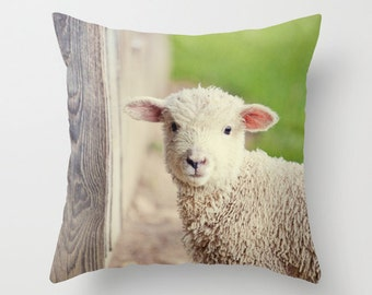 rustic home decor, farm animal photography, photography pillow cover, throw pillow, lamb photography, Baby Lamb Pillow