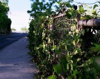 Gate Photograph - Jerome, AZ - FREE Shipping!