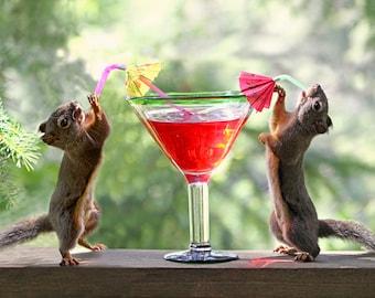 Funny Art, Squirrel Art, Art for Bar, Squirrel Print, Humorous Art, Anniversary Gift, Wine Humor, Alcohol Gifts, 10 Year Anniversary