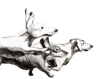 Running Dachshunds - Set of 5 Blank Note Cards