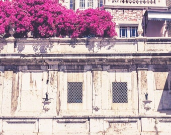 Portuguese Spring Photographic Print