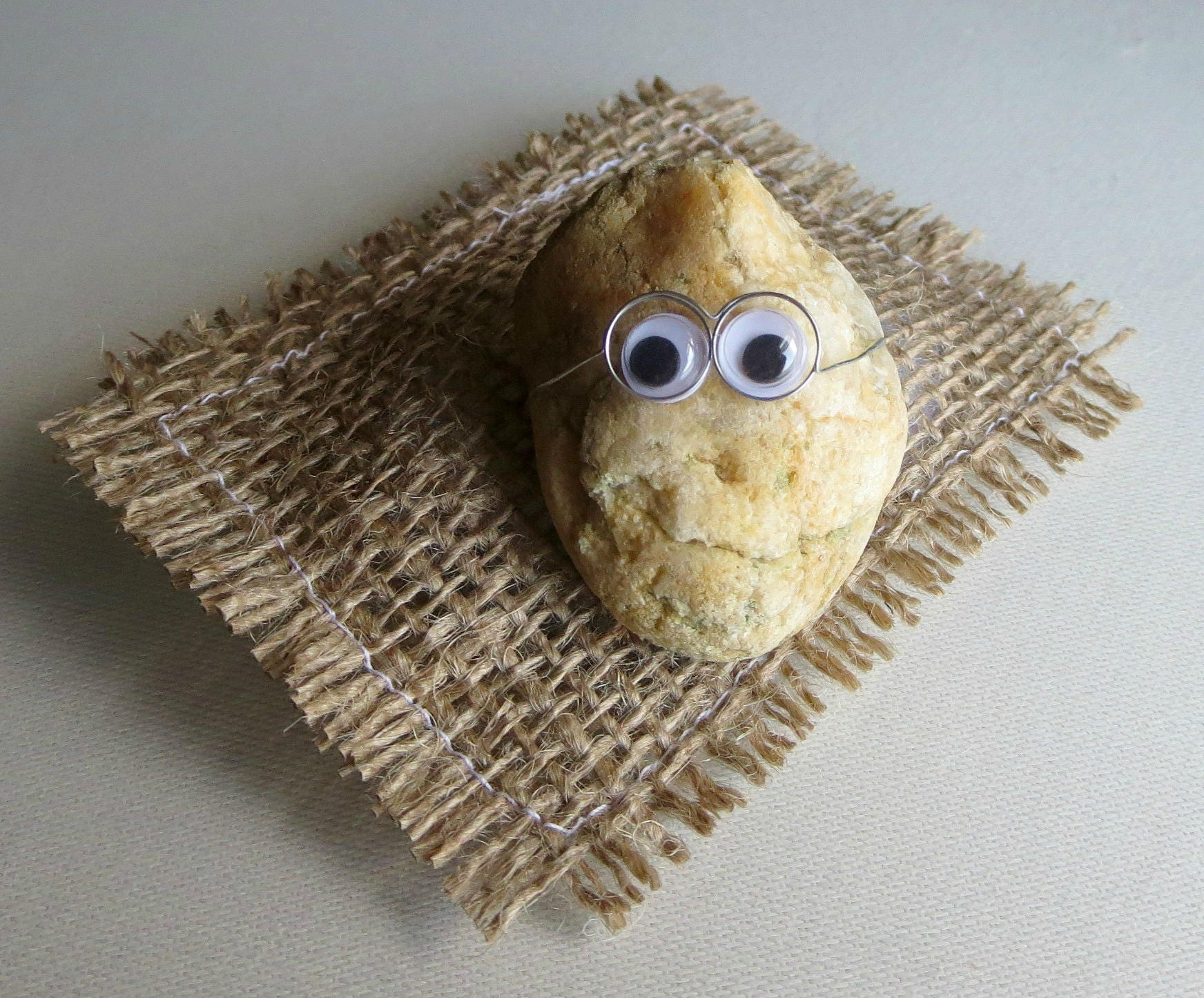 02e5ea36f1d3e Pet Rock collectible googley eyes wire glasses natural