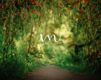 Enchanted Forest- Digital Background